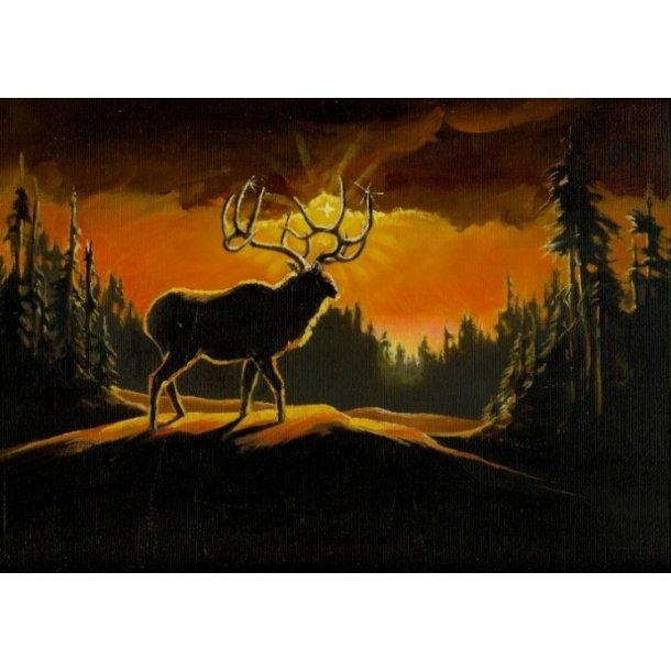 Garé Barks - Elk Christmas