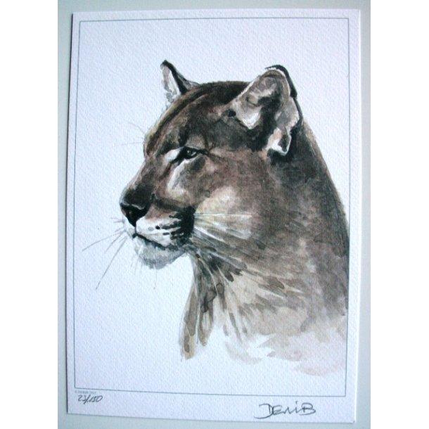 Derib - Puma S/N lithograph